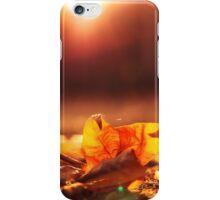 Late summer sun iPhone Case/Skin