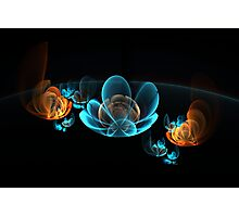 fantastic delicate glowing flowers Photographic Print