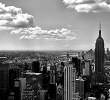 Empire state of mind by Sophie Maher