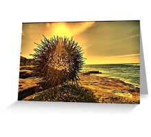 2016 Sculpture by the Sea 02 Greeting Card