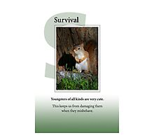 Survival Photographic Print