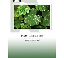 Rain by Heartland