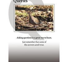 Queries by Heartland