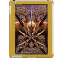 Vision: Spirit Catcher iPad Case/Skin