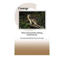 Courage Photographic Print