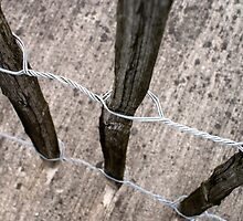 Wood Wire And Concrete # 2 by Jazzdenski