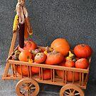 Cartload pumpkins by Arie Koene