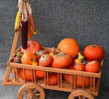 Cartload pumpkins by Arie Koene