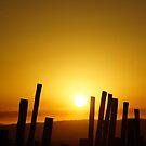 Sun's Up by © Loree McComb