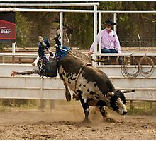 Rodeo Cowboy Thrown from a Bull Photographic Print