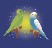 Two budgies by jazzydevil