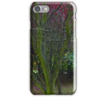 Magic Autumn leaves . October 2016 . Dr.Andrzej Goszcz. Canon 5D . iPhone Case/Skin