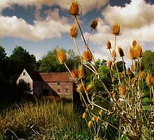 Sturminster Mill by Jon Holland
