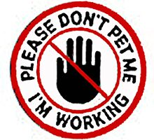 Please don't. by Becki Edwards
