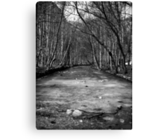 Frozen River - B&W Canvas Print
