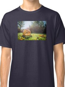 Halloween pumpkin on grass and leaves in the garden in nice sunny day Classic T-Shirt
