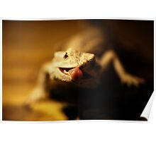 iguana tongue Poster