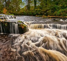 Pots Of Gartness In Killearn, Scotland by Jeremy Lavender Photography