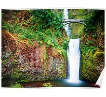 Bridge over waterfall full with green leaves and water pool Poster