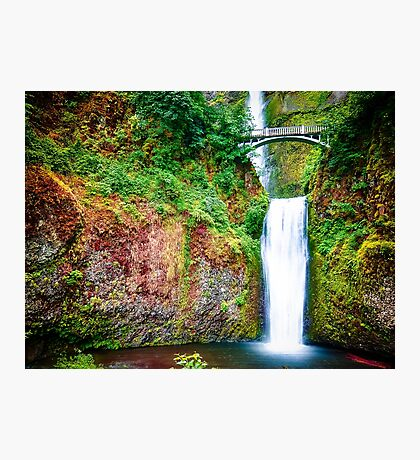 Bridge over waterfall full with green leaves and water pool Photographic Print