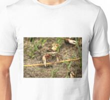 Shem Creek Crabs Unisex T-Shirt