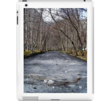 Frozen River iPad Case/Skin