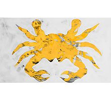 Salty crab Photographic Print