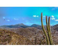 Landscape Scene Machalilla at National Park Ecuador Photographic Print