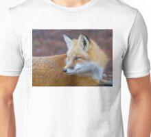 Red fox (Vulpes vulpes) in Algonquin Park Unisex T-Shirt