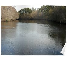 waccamaw river SC Poster