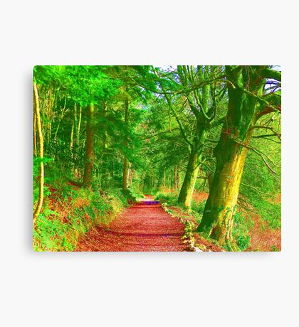 Hockney Path Tribute Canvas Print