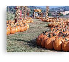 A Walk Down Pumpkin Lane Canvas Print