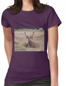 Red Deer during Rutting Season  Womens Fitted T-Shirt