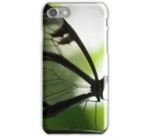 Glasswing Butterfly iPhone Case/Skin