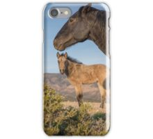11 - Last Wild Horses in Nevada iPhone Case/Skin