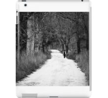Walk Alone iPad Case/Skin