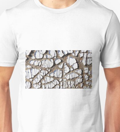 Cracked Past Unisex T-Shirt