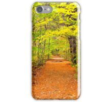 Fall in New Hampshire: A Walk in the Wood iPhone Case/Skin