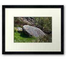 UFO Shaped Millstone Framed Print