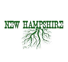 New Hampshire Roots Photographic Print