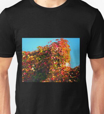 Virginia Creeper ........Dorset UK Unisex T-Shirt