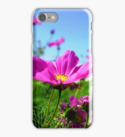 Cosmos in the Dream Garden iPhone Case/Skin