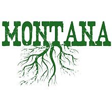 Montana Roots by surgedesigns