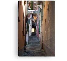 streets of a village typical Metal Print