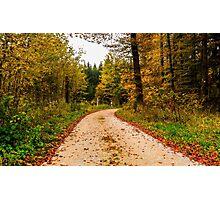 Path to Autumn Photographic Print