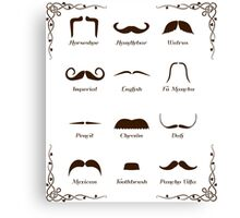 Mustache Style Identification Chart Canvas Print