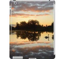 Landscape with a Swan iPad Case/Skin