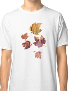 Stairs in the Fall Classic T-Shirt