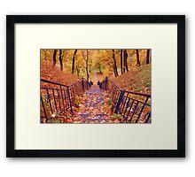 Stairs in the Fall Framed Print