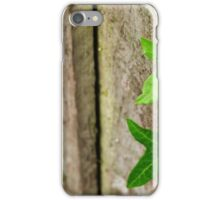 Ivy Climbing Wooden Fence iPhone Case/Skin